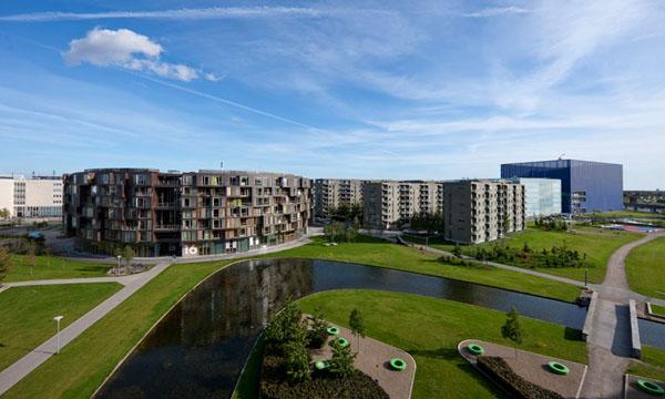 丹麦哥本哈根大学