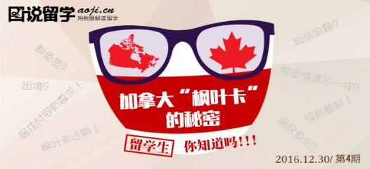 解析99%会存在的加拿大枫叶卡误区
