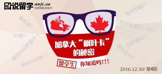 """""""图说留学""""第四期上线,解析99%会存在的加拿大枫叶卡误区"""