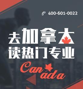 去加拿大读热门专业