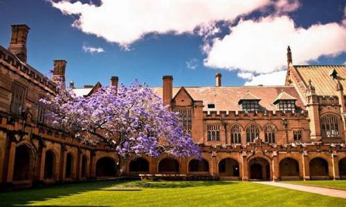 澳洲艺术类专业的强势院校有哪些